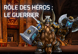 guide role des heros le guerrier (widget)